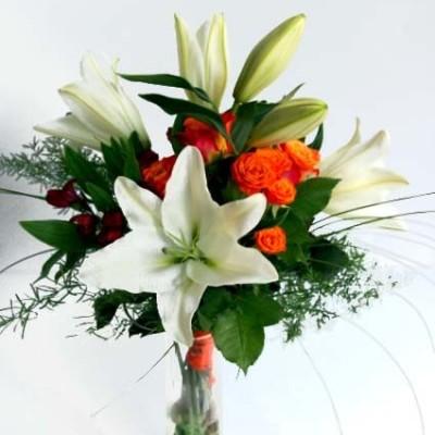 Liilia-oranz-roos