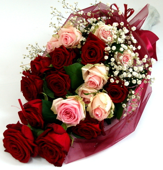 Bouquet of red and pink roses wrapped | Lillepidu