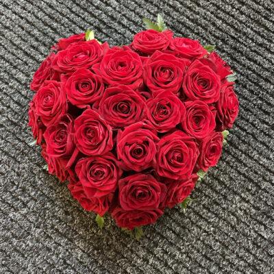 Punane roosisüda väike